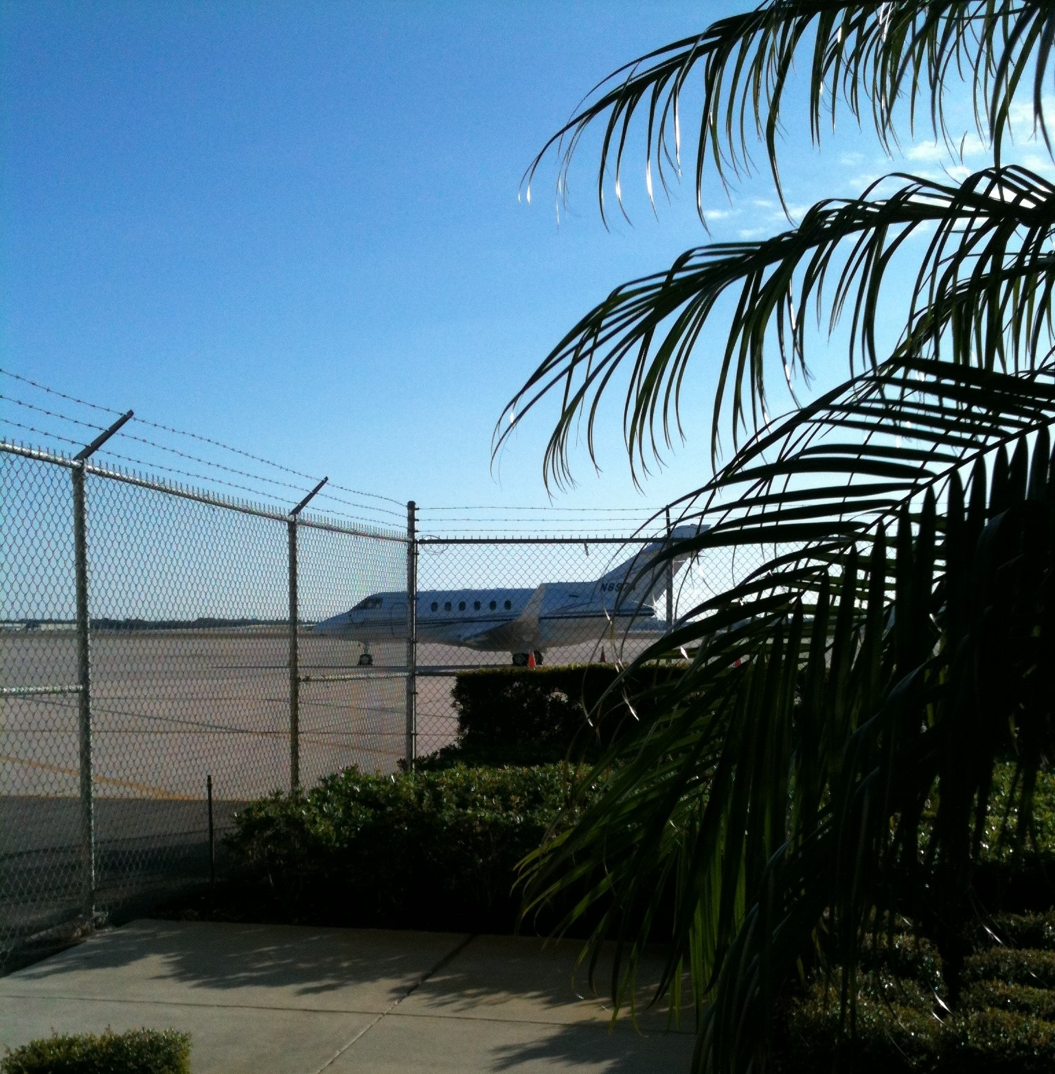 Private jet on tropical runway