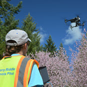 Woman operating sUAS over trees